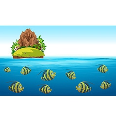 Scene with fish swimming under the sea vector image