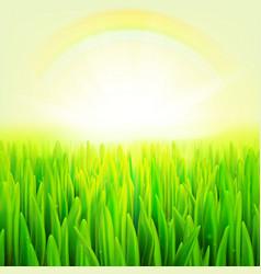 stock realistic macro grass vector image