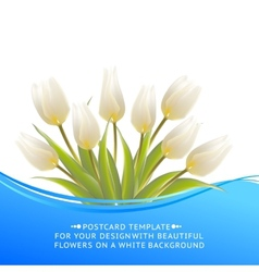 White tulip spring bouquet for sale vector