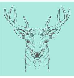 deer head green pastel hand drawn vintage vector image