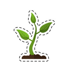 cartoon sprout growing plant eco vector image vector image