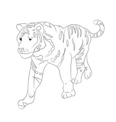 a tiger that goes drawing by vector image