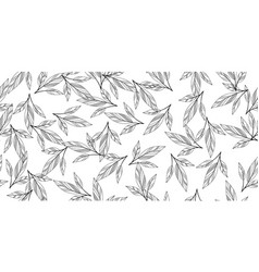 black and white seamless leaves vector image