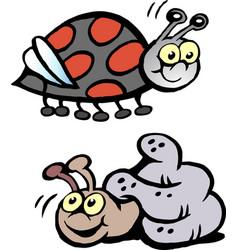 Cartoon of a ladybug and a snail vector