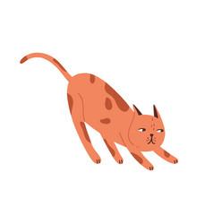 childish hunting playful cat portrait cute vector image