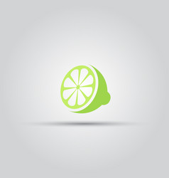 sliced lime isolated colored icon vector image