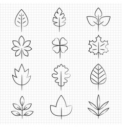 Thin line leaves collection vector