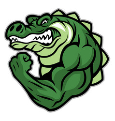 Crocodile mascot show his muscle arm vector