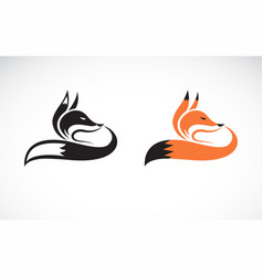 fox design on white background wild animals easy vector image