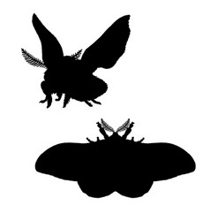 moth silhouette black white icon of bloodworm vector image