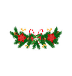 spruce branches and white mistletoe red poinsettia vector image
