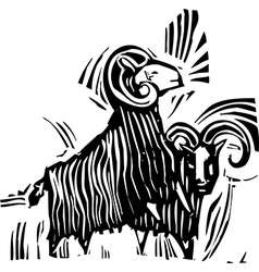 Two Rams vector image