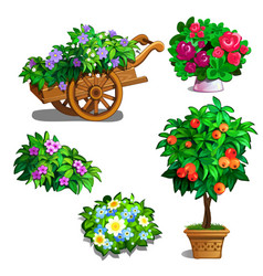 Cart with flowers orange tree roses and bouquets vector