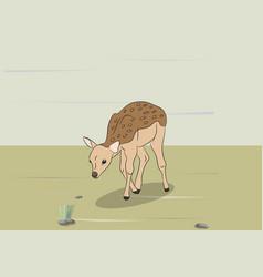 child deer lying vector image