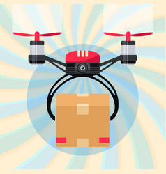 drone with paper package box delivery order vector image