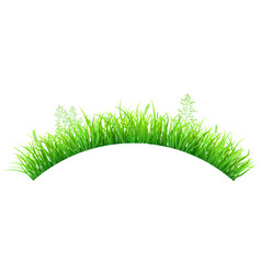 green grass in the shape of an arc vector image