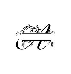 initial a decorative plant monogram split letter vector image