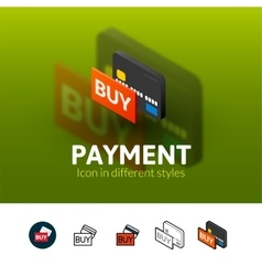 Payment icon in different style vector image