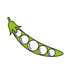 Peas vector