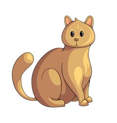 Persian cat icon vector