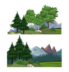set nature landscapes vector image