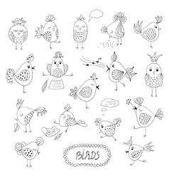 Set of cute birds in different actions vector