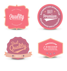 set pink label website offer quality white layout vector image