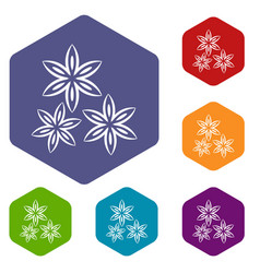 Star anise icons set hexagon vector