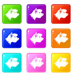 Terrier dog icons 9 set vector