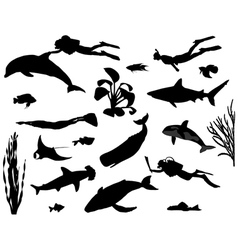 Divers vector image vector image