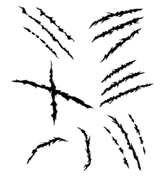 Claws scratches set vector image