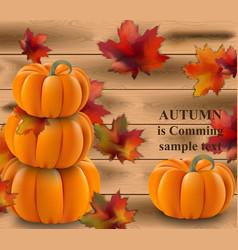 pumpkin realistic on wood vector image