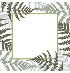 fern square white frame green vector image