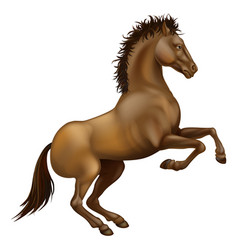 Rearing brown horse vector