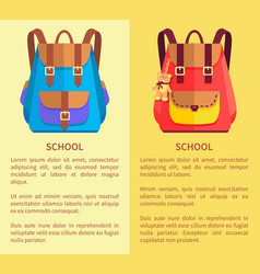 School rucksacks for boys and girls blue and pink vector