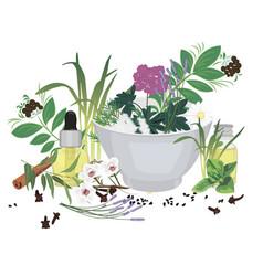 Set of essential oils vector
