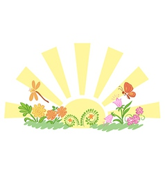 Sun with flora and fauna vector