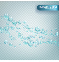 water bubbles isolated on a transparent checkered vector image