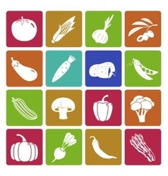 Colorful vegetable icon set vector image vector image