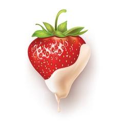 Strawberry white chocolate vector