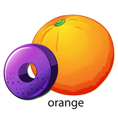 A letter O for orange vector image