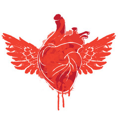 banner with red flying human heart with wings vector image