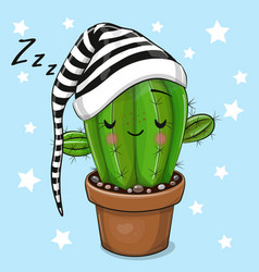 cartoon sleeping cactus on a blue background vector image