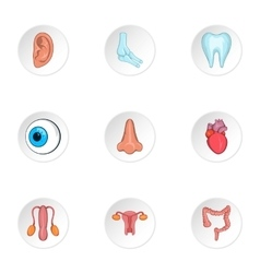 Structure of body icons set cartoon style vector image