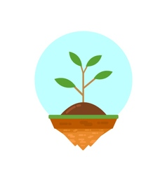 422plant on islandVS vector image