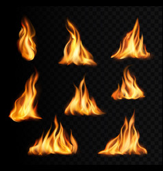 burning fire flames and trails campfire tongues vector image