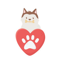 cute dog with bone heart love paw adoption vector image