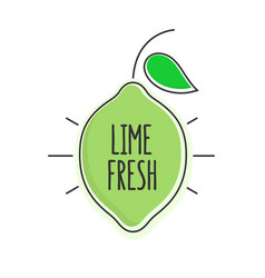flat style minimal trendy lime bubble price tag vector image