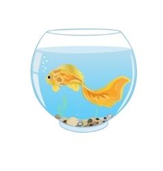 Goldfish swimming in aquarium vector