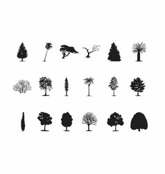 black tree silhouettes vector image